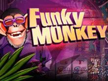 Виртуальный игровой автомат Funky Monkey